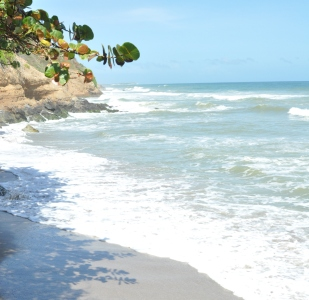 Huachamakari Mar Caribe